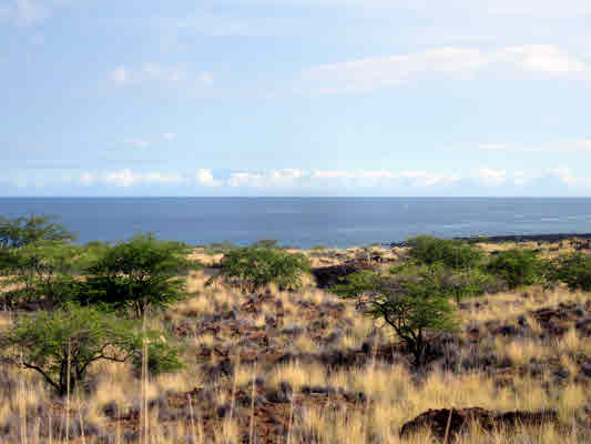 MLS No. 264224 - North Kona Vacant Land For Sale