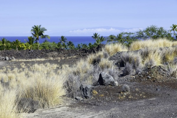 MLS No. 267832 - North Kona Vacant Land For Sale