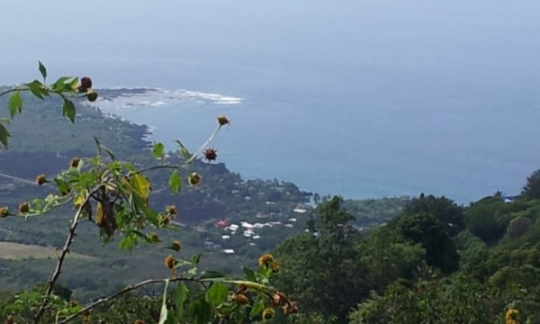 MLS No. 269365 - South Kona Vacant Land For Sale