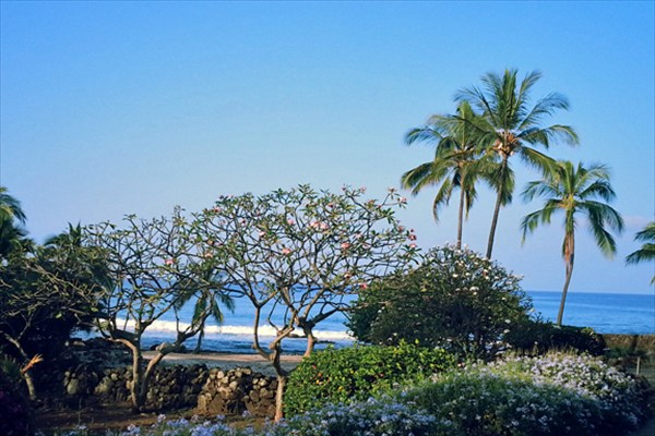 MLS No. 263175 - North Kona Vacant Land For Sale