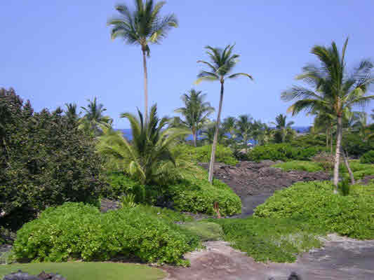 MLS No. 233884 - North Kona Vacant Land For Sale