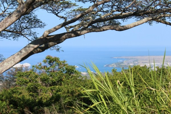 MLS No. 272199 - North Kona Vacant Land For Sale