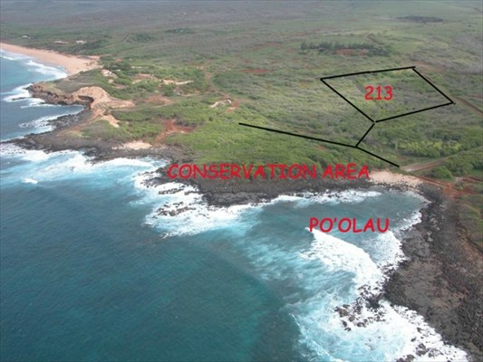 213 POHAKULOA RD, Maunaloa, HI 96770
