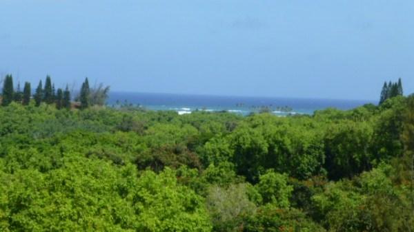 Kauai Listing Image