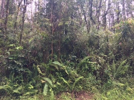 MAUI RD, Pahoa, HI 96778