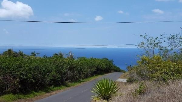 Moana Drive, Captain Cook, HI 96704