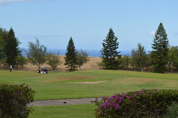 68-1754 MELIA ST A101, Waikoloa, HI 96738