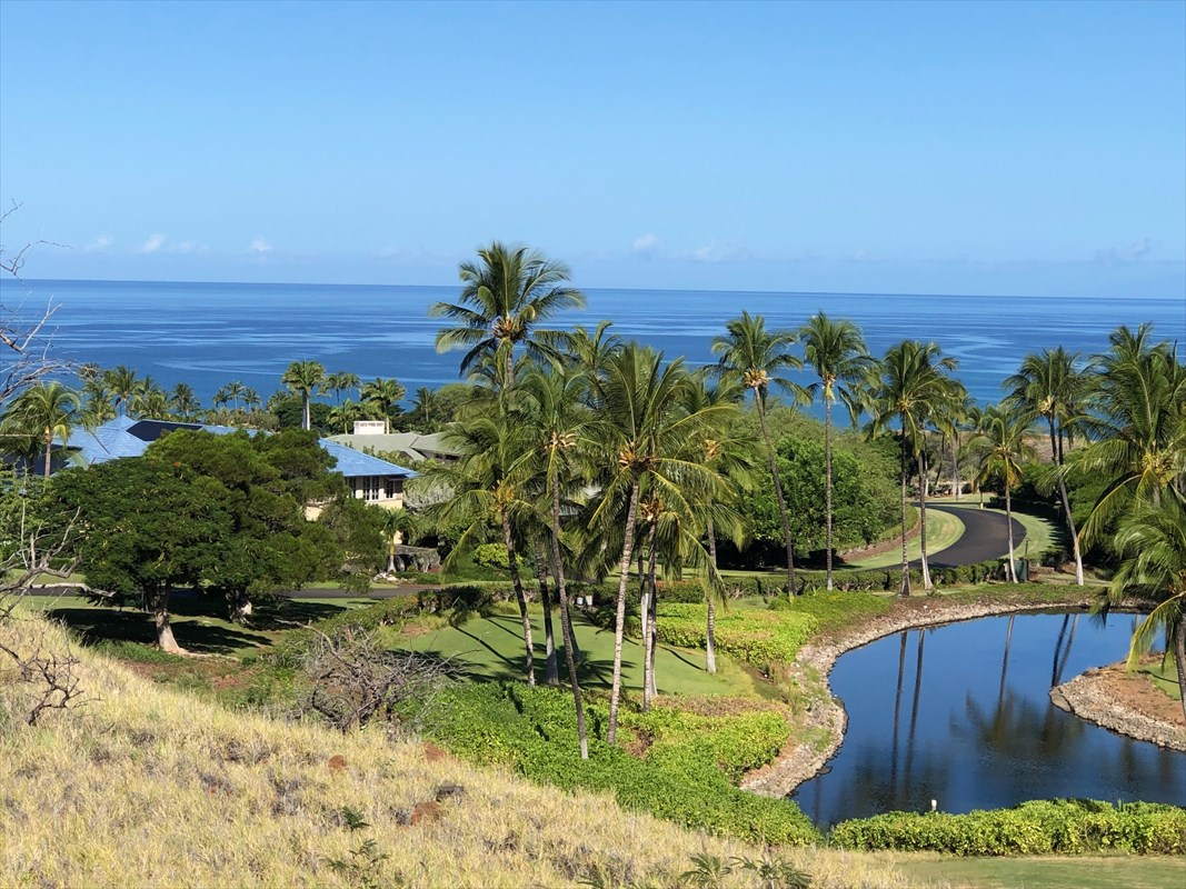 Priced to move, this homesite is just short of an acre and has awesome views of the ocean, coastline, Maui and Kohala Mountain. Located at the end of a cul de sac, it offers privacy and good topography to build a custom home with infinity edge pool, as the view side of the property drops off into a preservation park area.