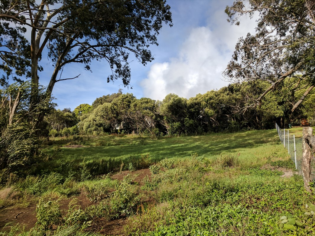 Don't miss this opportunity! Located in the ultra-desirable Hokuula area on the dry side of Waimea, this 1.3 acre vacant lot is a dream come true! Easy access up Lindsey Rd off Hokuula Road, this central location allows you to walk everywhere in Waimea Town. With a gentle slope from top to bottom, the high spot of the lot will give you views of Mauna Kea and Mauna Loa. The lot has been mostly cleared, including a section that is an easement onto the property. Zoned Ag, and with no CC&Rs, this lot gives you a blank slate to build your dream home! County water and HELCO connections are close by and with easy access. Waimea is home to two Presidential Award winning college preparatory schools K-12, North Hawaii Community Hospital, Parker Ranch, several farmers markets and great restaurants. Come build your dream home in one of the best places to live and experience upcountry living while being only 20 minutes to the best beaches in the world!