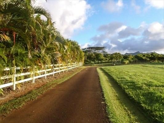 Kapuna Road 2, Kilauea, HI 96746