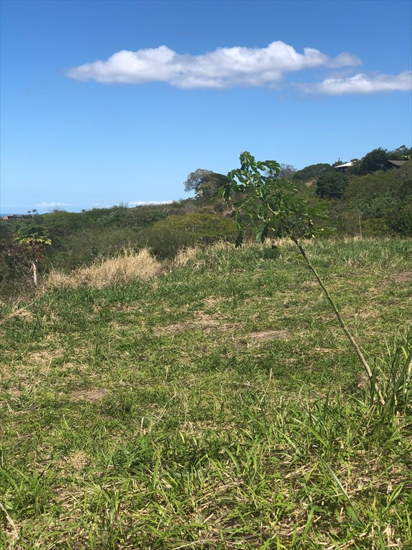 Ocean and town views from this newly subdivided 1/2 acre lot.
