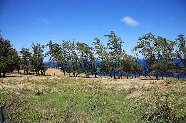 Uli Road, Hawi, HI 96719