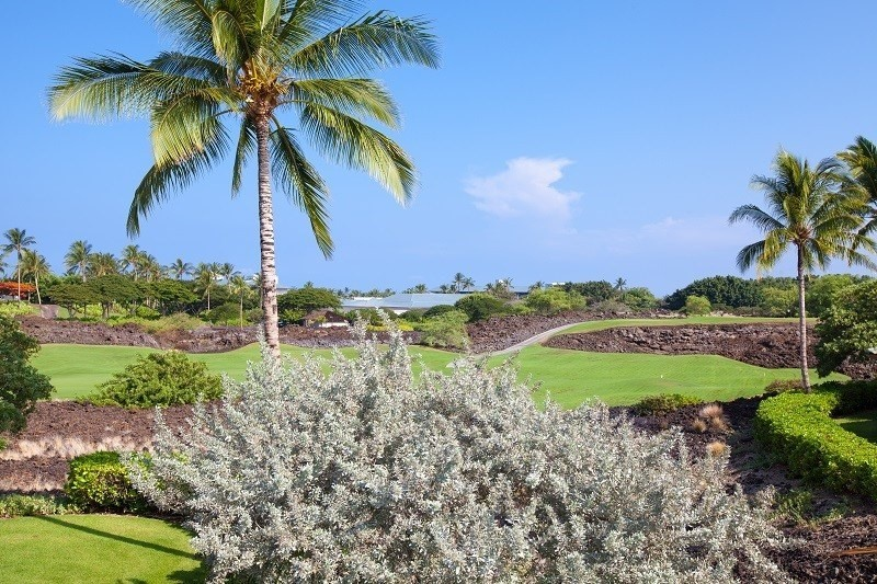 Stunning 2/2 with Golf course frontage in prime location on the 12th fairway of Mauna Lani's North Course!! UPGRADED throughout, this unit is unparalleled and tastefully designed. Sunset views, sheltered from the trades, PRIVATE LOCATION, easy access to the pool, spa, BBQ area but extremely private.  Small Ocean view from the upper lanai. Floor plan with large vaulted ceiling in great room, huge picture windows, and bedroom suites on separate levels for additional privacy. Gas Viking BBQ on lanai.  This unit is vacation ready...completely turnkey...you have no work to do.  Attached 1 car garage for convenience. Live the Resort Life and the benefits of the Advantage membership.New  Maytag washer/dryer setNew GE Profile MicrowaveNew Bosch DishwasherNew PaintNew ToiletsNew FaucetsNew 10 year Viking burners in the grillTile Flooring Through out main Floor living area newly sealed grout New Garbage DisposalTommy Bahamas Beach accessoriesFull Turnkey Rental