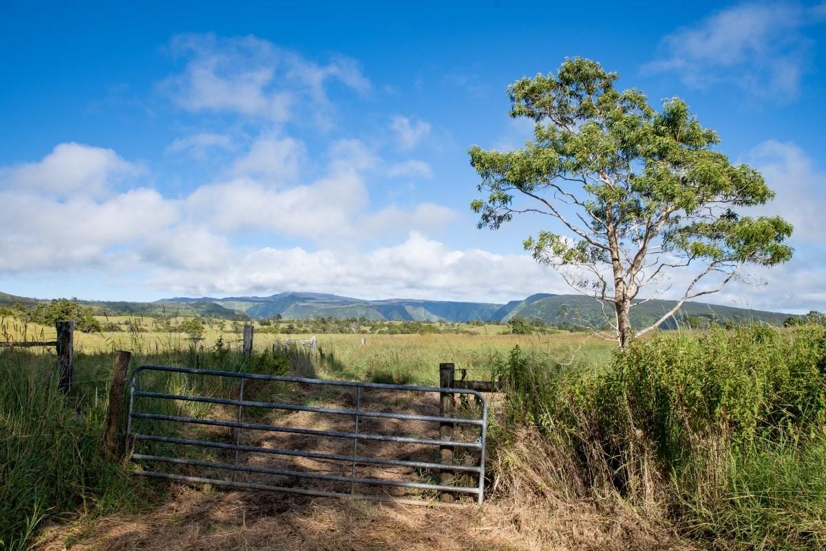 West Waikoekoe, HONOKAA, HI 96727