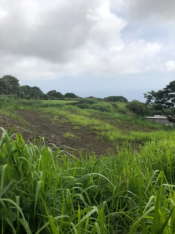 1 acre lot in Holualoa. Large pad already graded. Close to the village and shops. No CC&Rs.