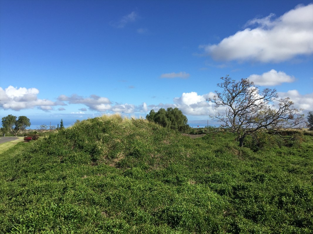 1 acre of land with unobstructed Mauna Kea views. Borders State land in a private, gated subdivision with a members clubhouse.